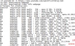 Vps安装youtube_dl实现youtube、优酷、pr*nhub等视频下载