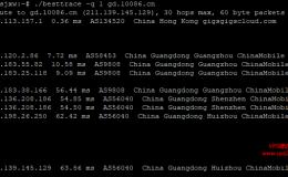 linux主机路由回程测试工具besttrace,支持显示as号和地区