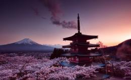 日本VPS:稳定好用的CN2 GIA、日本软银、NTT 线路VPS推荐
